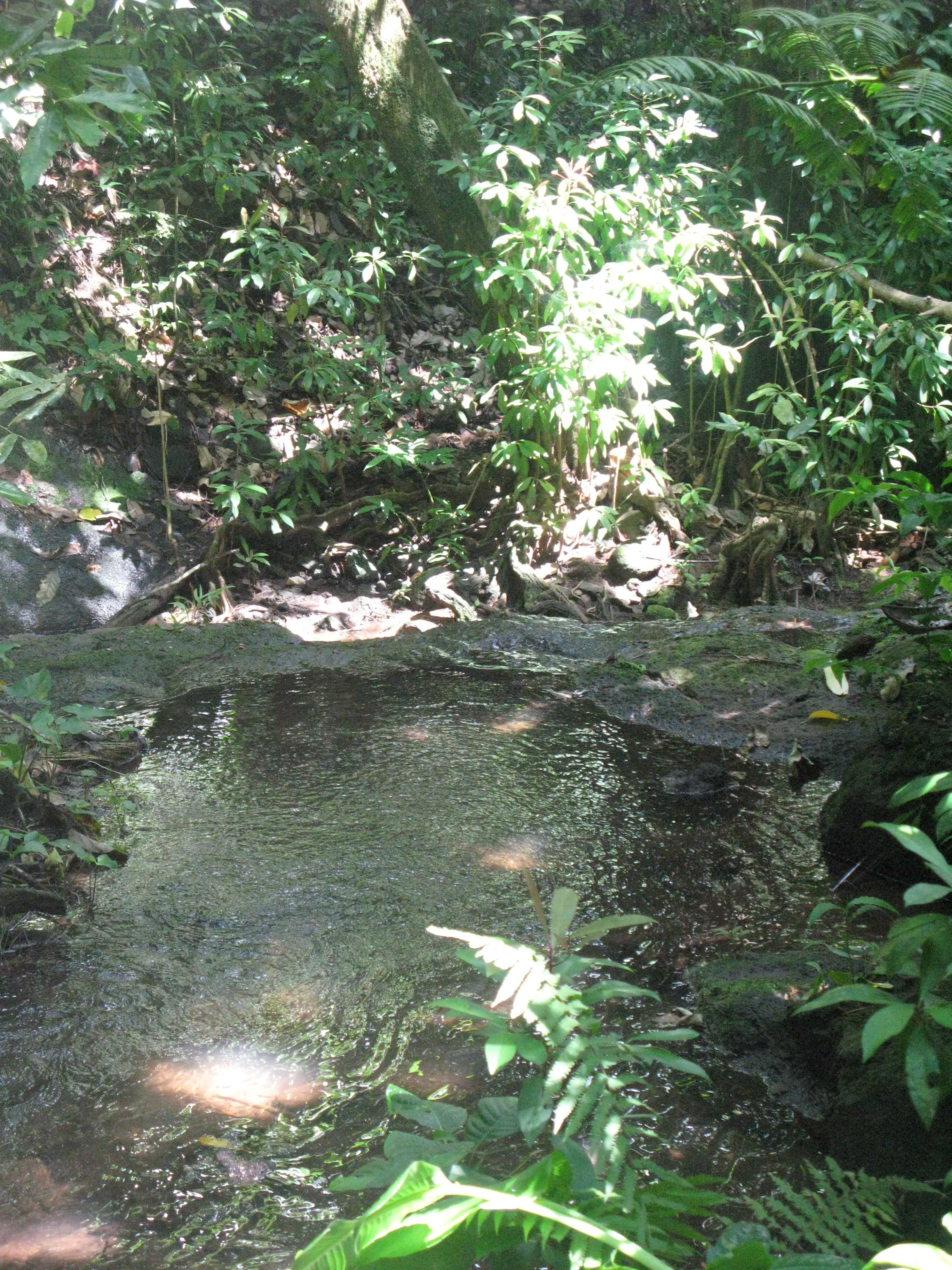 2-1 croisement riviere